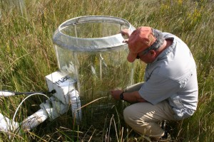 Bert Drake inspecting equipment at his marsh research site.