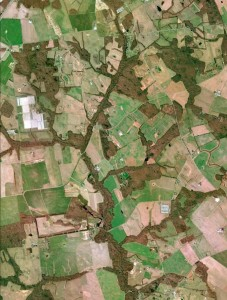 Aerial photo of farmland and streams - with trees growing in between them.
