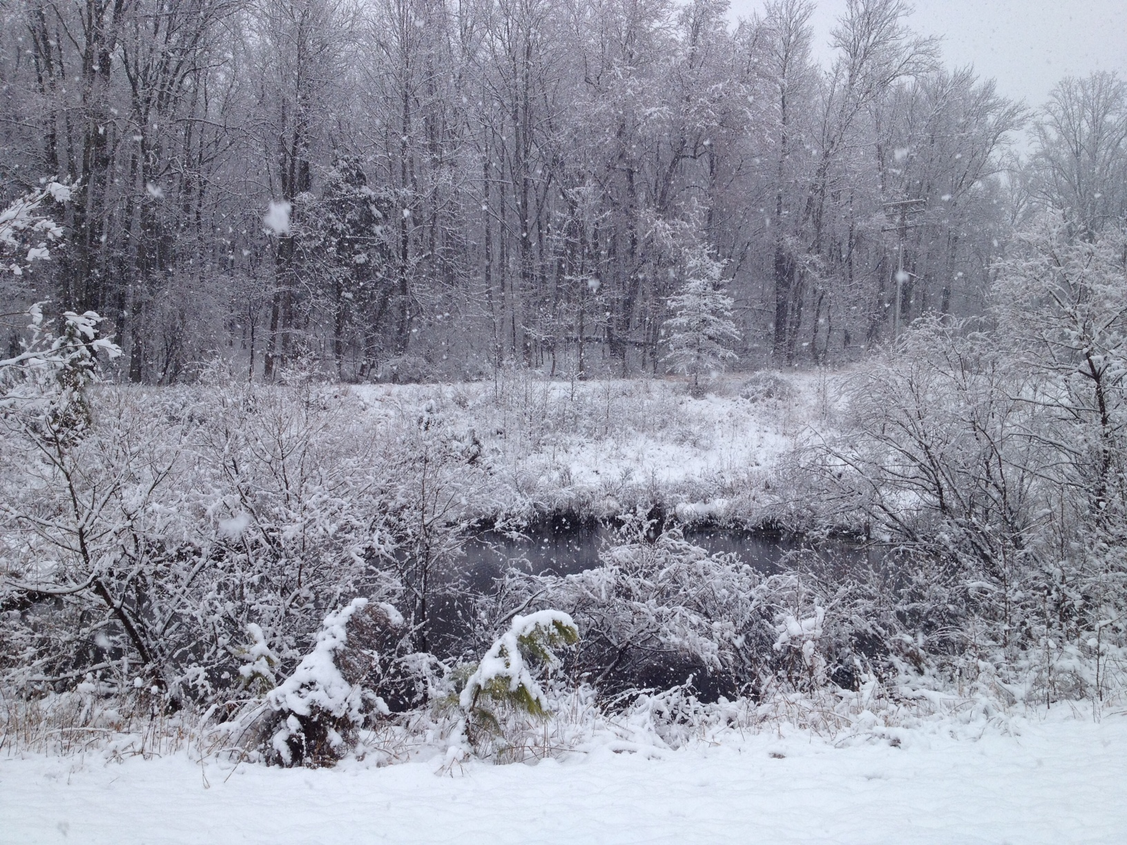 blog archive warm enough to snow climate change and blizzards