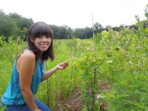 Photo: Dejeanne Doublet inspects a red oak in BiodiversiTree. (Credit: SERC)