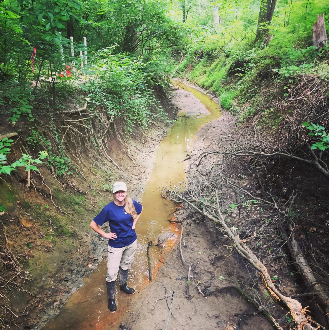Image: SERC Intern Julianne Rolf stands in the streambed of Muddy Creek. Erosion has caused it to drop 10 feet below its floodplain. (Credit: SERC)