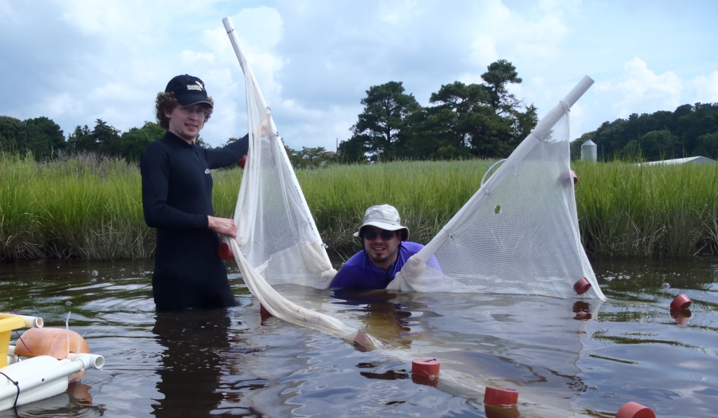 Andrew Keppel and Seth Miller with net in river