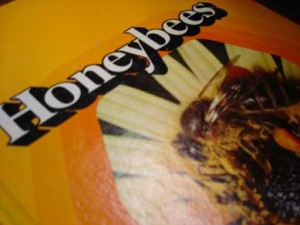 Cover of book titled Honeybees