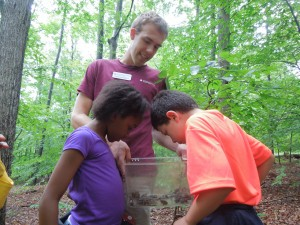 Intern Dylan McDowell shows Eudora Ezirike (left) and Matthew Hall the wild frogs and toads their group collected. (SERC)
