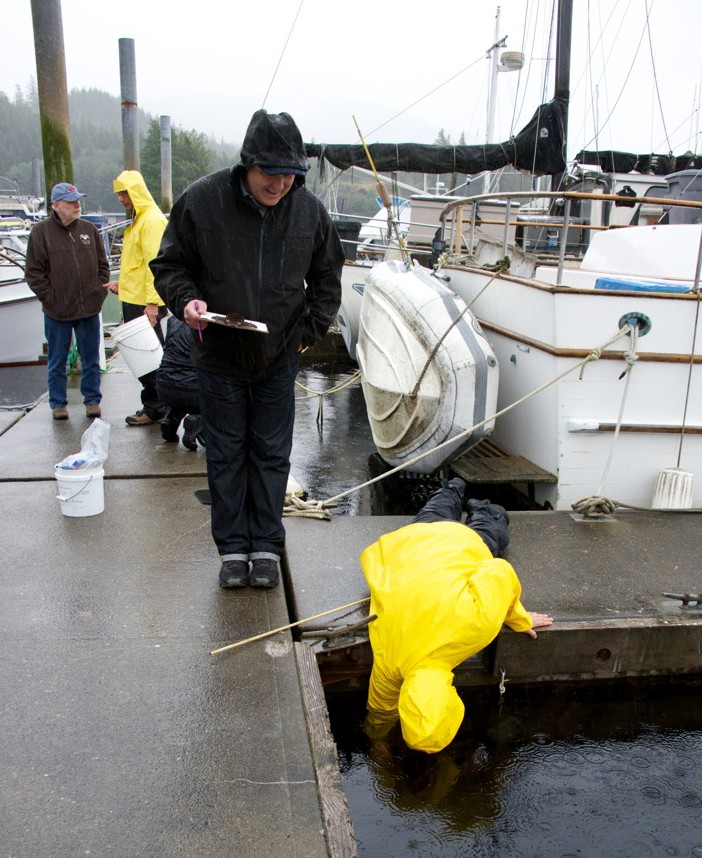Bioblitzers braved the rain to search for invasive species. (Deborah Mercy)
