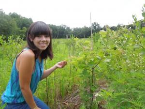 Photo: Dejeanne Doublet inspects a red oak in BiodiversiTree. (Credit: SERC)