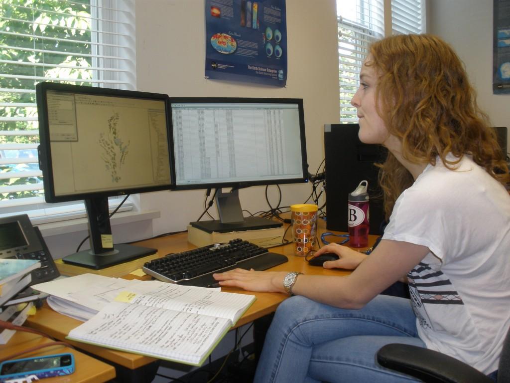 SERC intern Bridget Smith, immersed in a sea of environmental data.