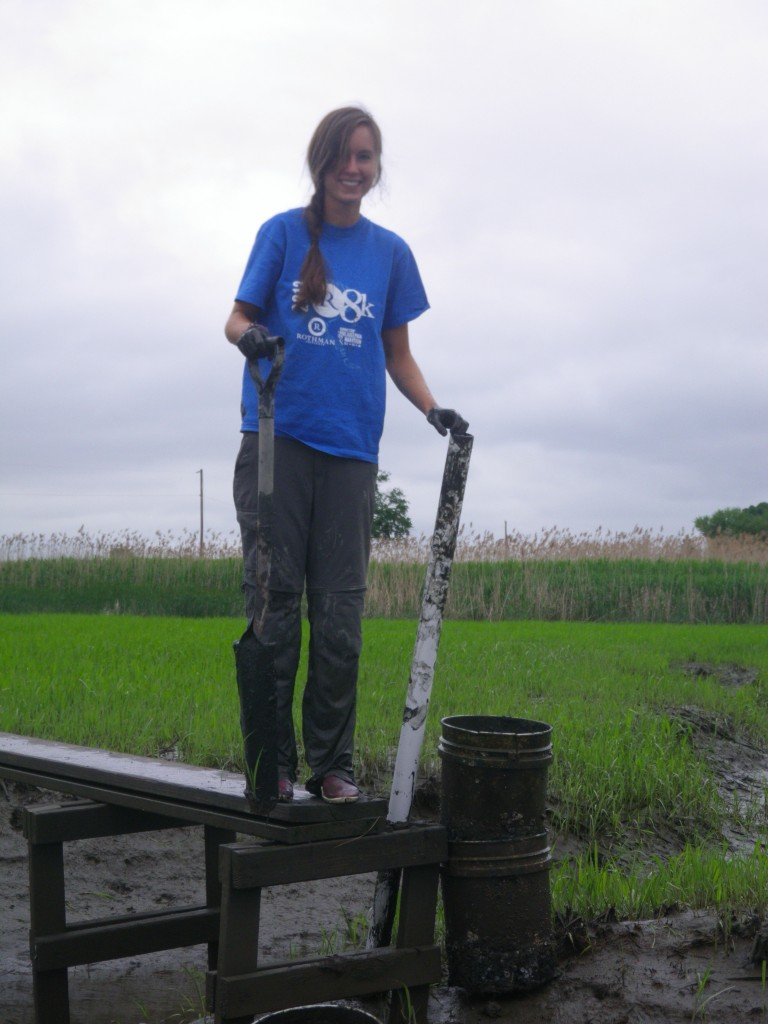 Image: Melissa Pastore in a marsh near Delaware Bay. (Credit: Lori Sutter)