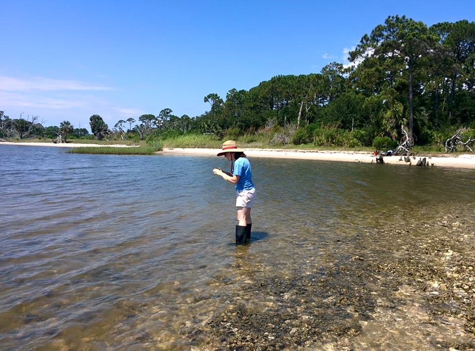 Tepolt hunting for mud crabs in Apalachicola, Florida. (Darin Rummel)