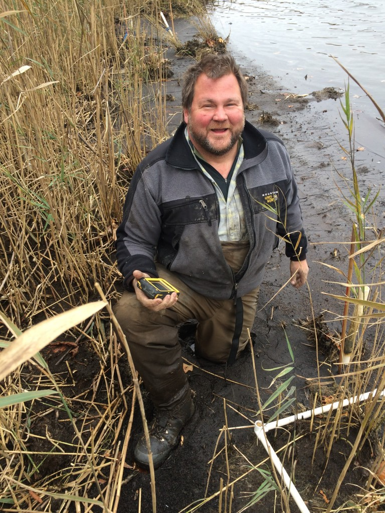 Eric Hazelton in a Phragmites patch on the Nanjemoy River in Maryland. (Rebekah Downard of Utah State University)