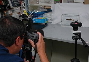 Rob Aguilar takes photos of all DNA barcoding reference specimens collected in the Chesapeake Bay