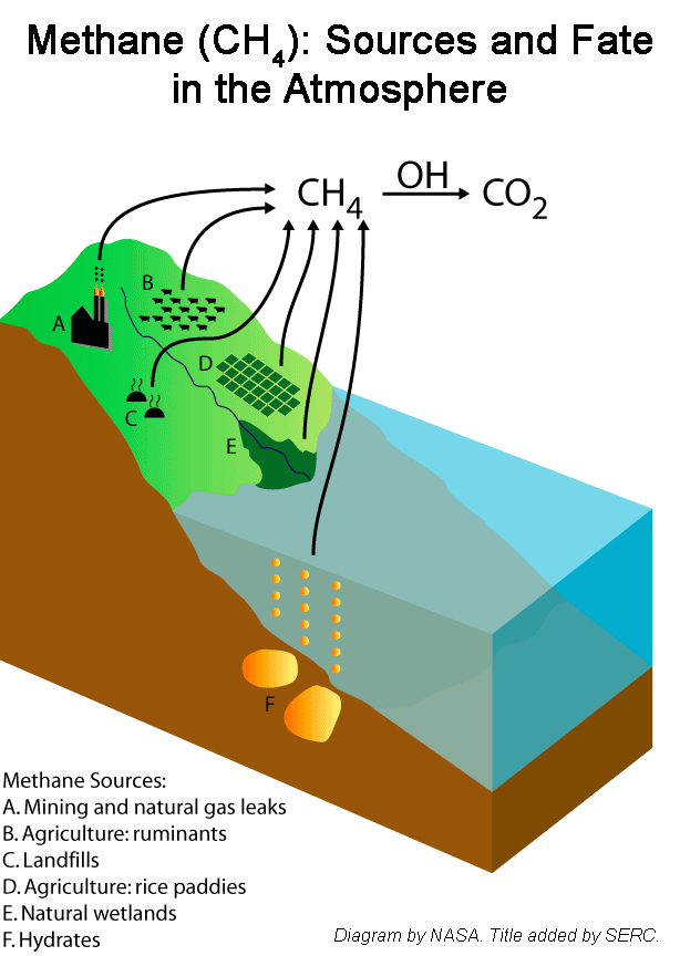 Diagram: Once in the atmosphere, methane lasts about 12 years before being transformed into carbon dioxide. (Credit: NASA)