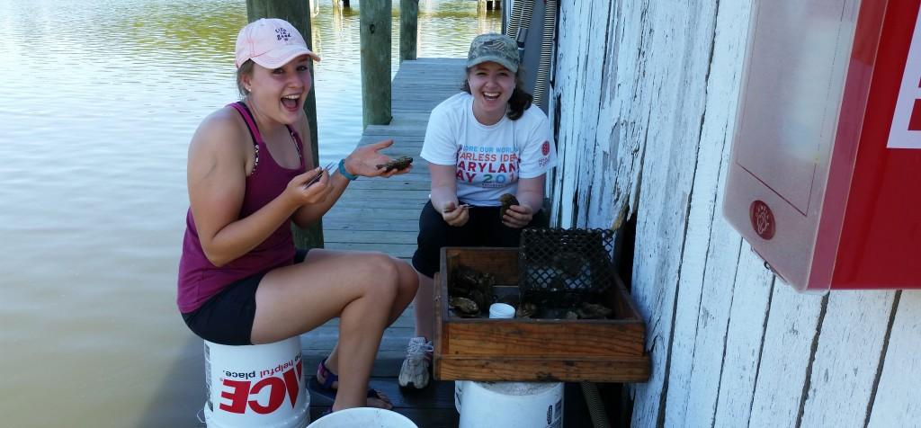 Two SERC staff on docks