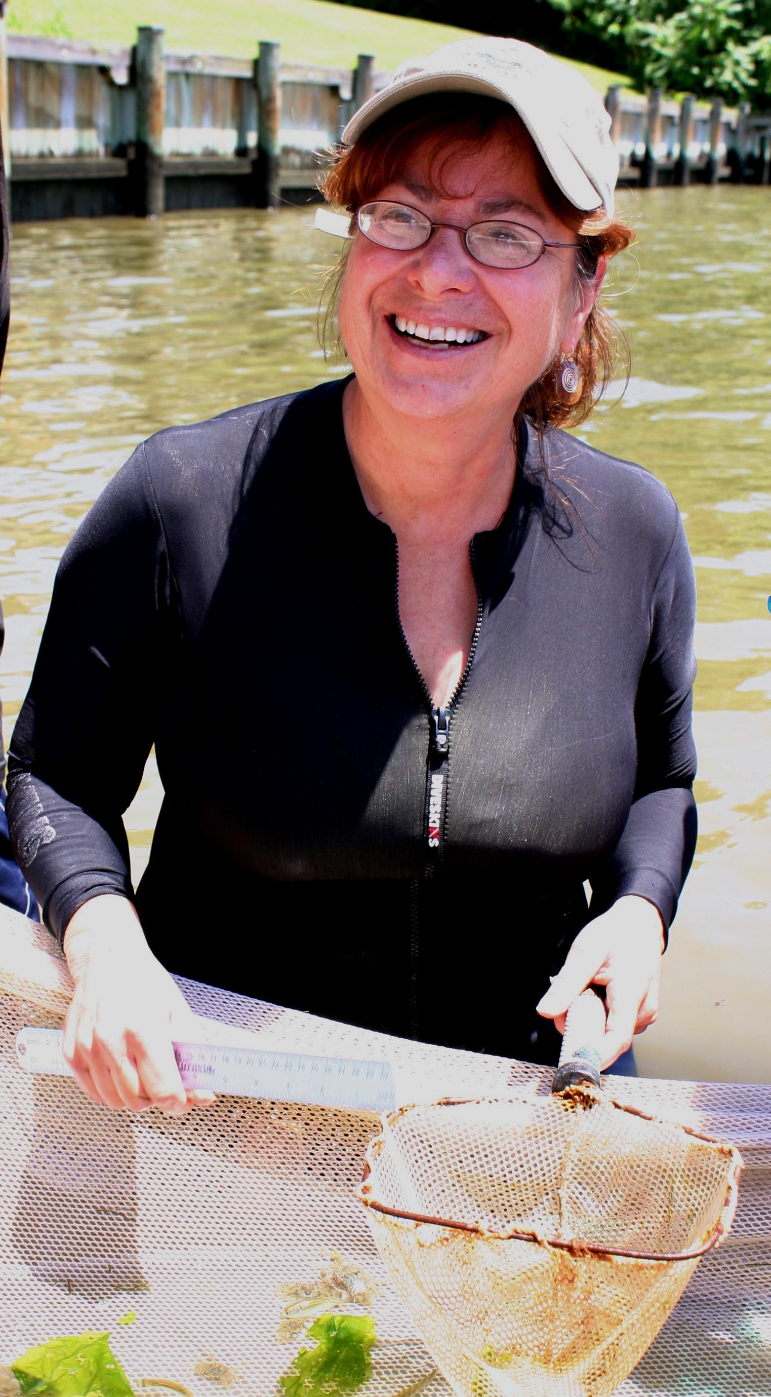 Denise Breitburg samples with net in river.