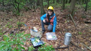 A scientists kneels in the forest next to field research materials.