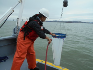 An intern in orange waders sprays a net hanging off the back of a boat.